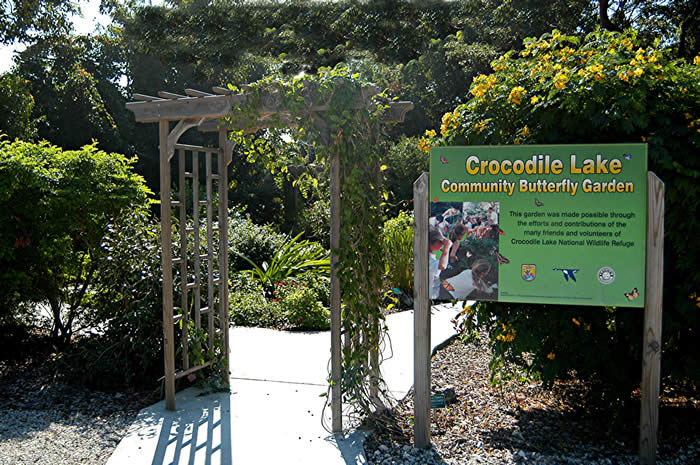 Crocodile Lake Butterfly Garden. Photo by David Lysinger.